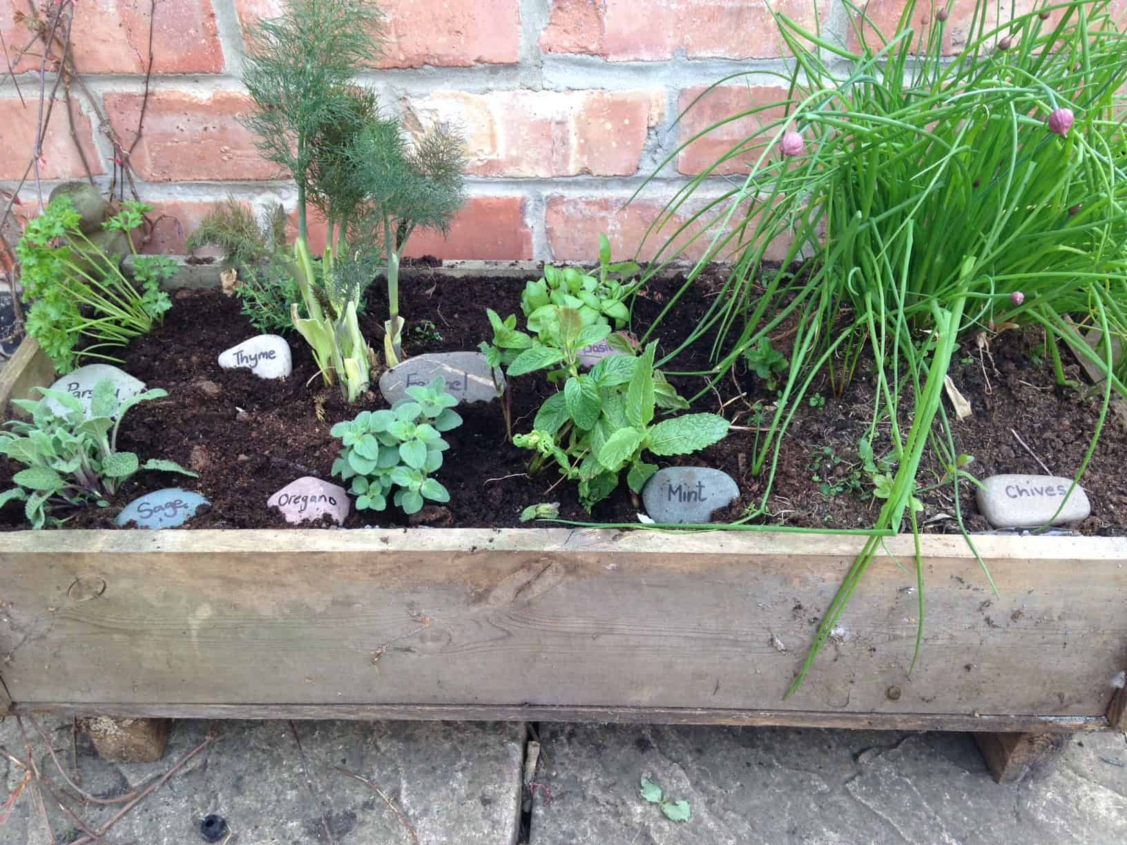 Growing a container herb garden a beautiful space for Container herb garden