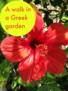 A walk n a greek garden