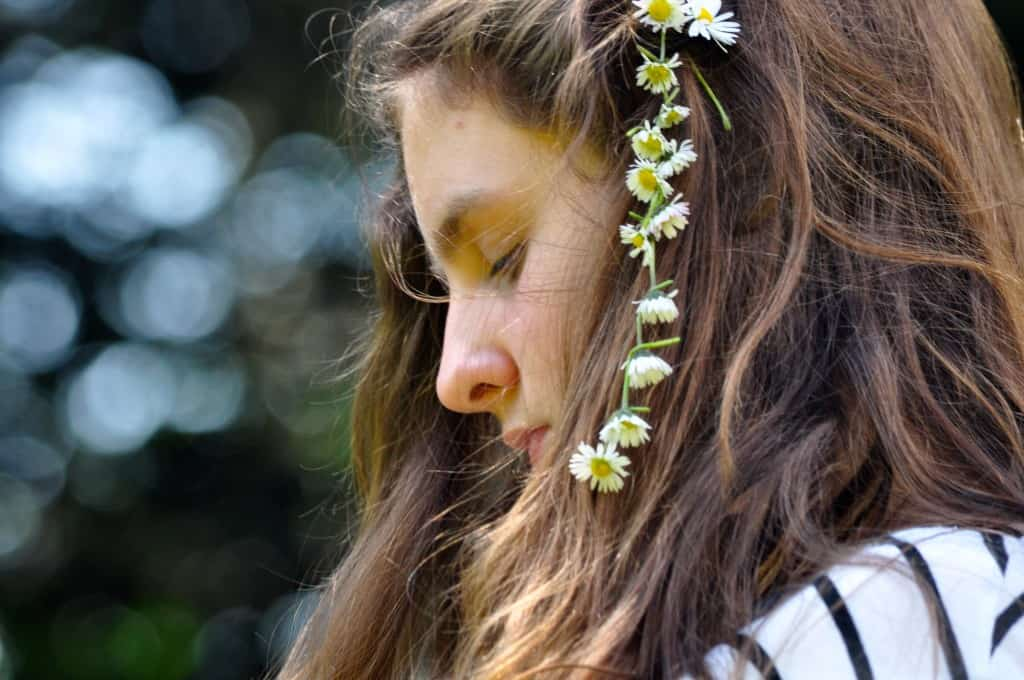 daisy chains lily