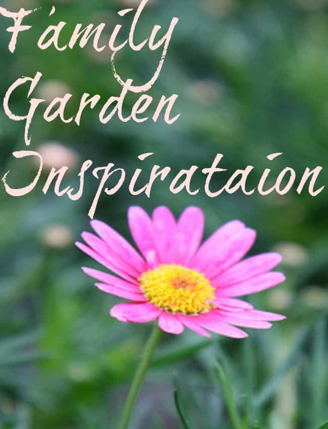 Family garden inspiration