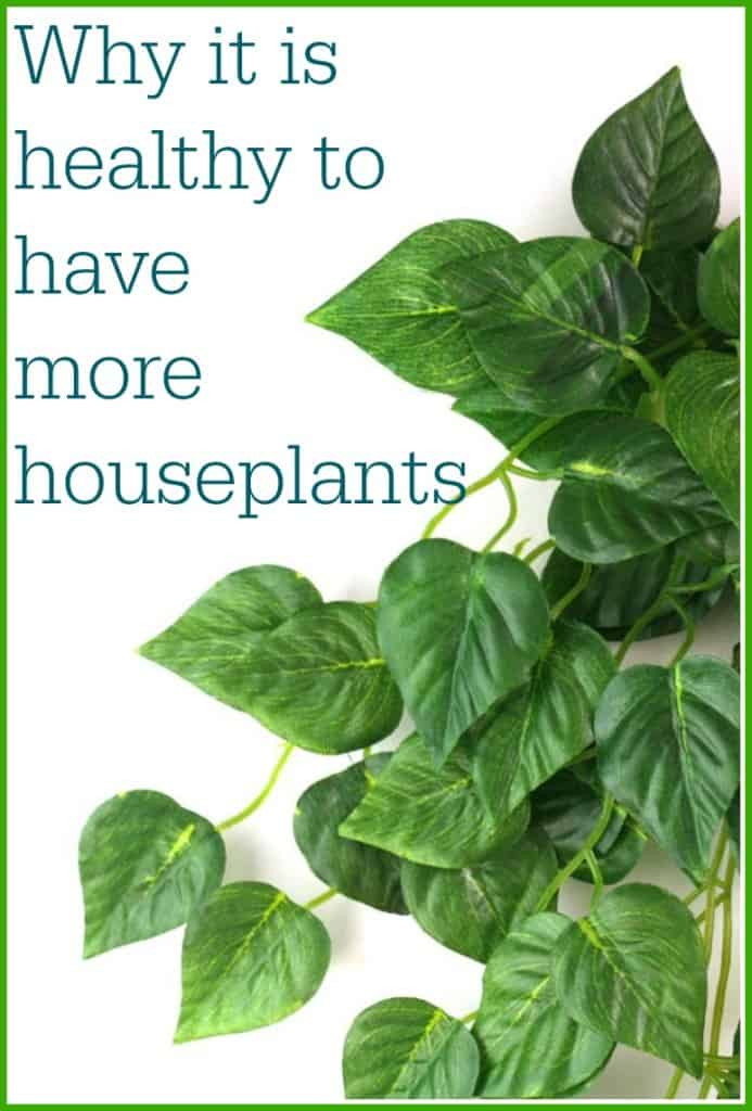 healthy to have more houseplants