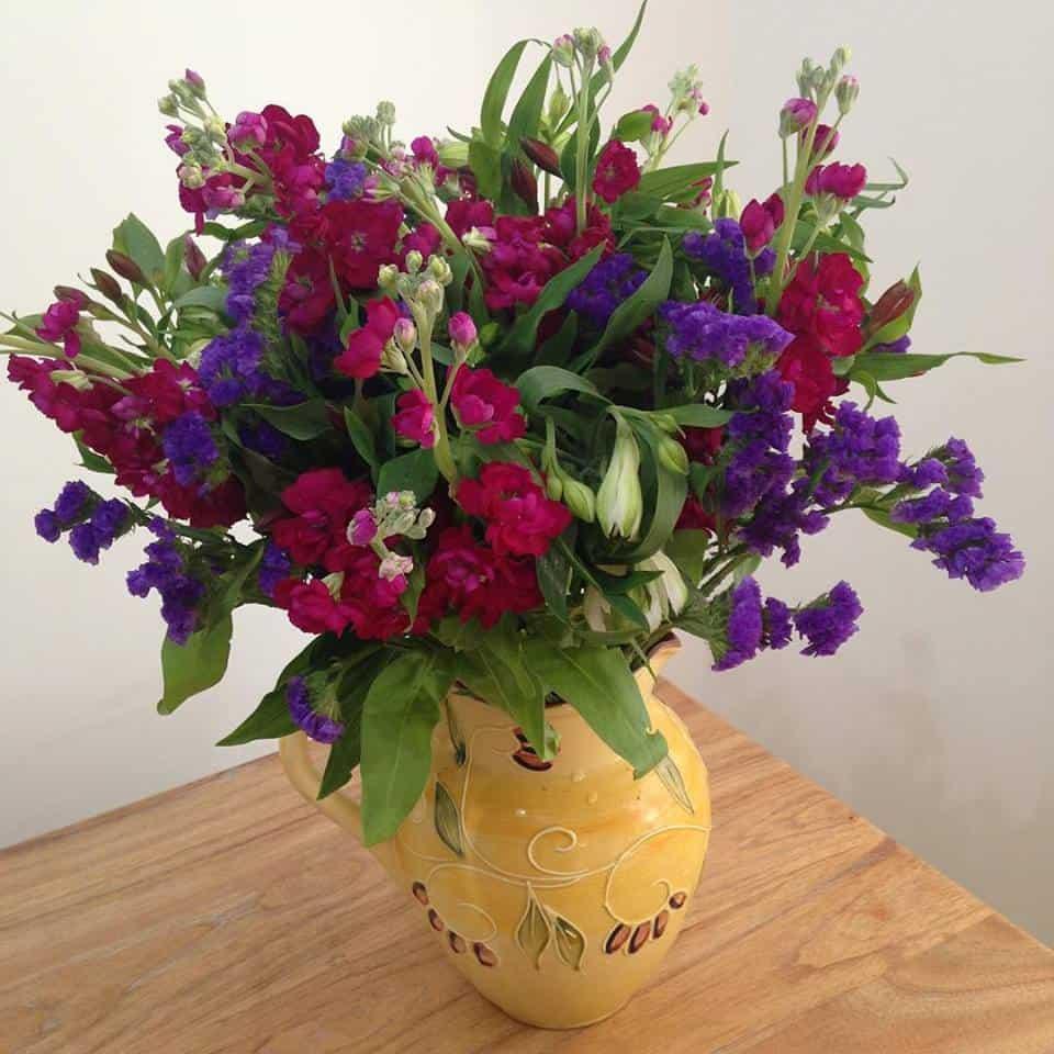 f flowers