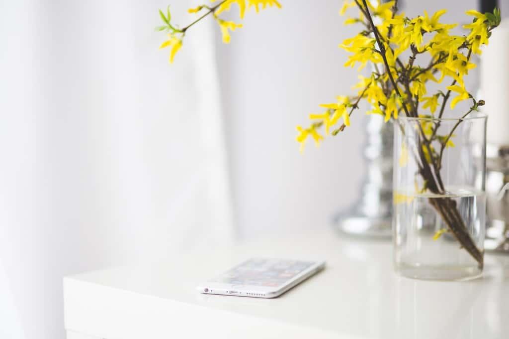 iphone-791450_1920