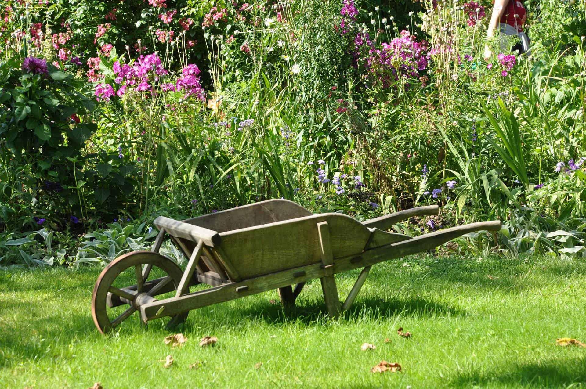 Garden Ready for Summer