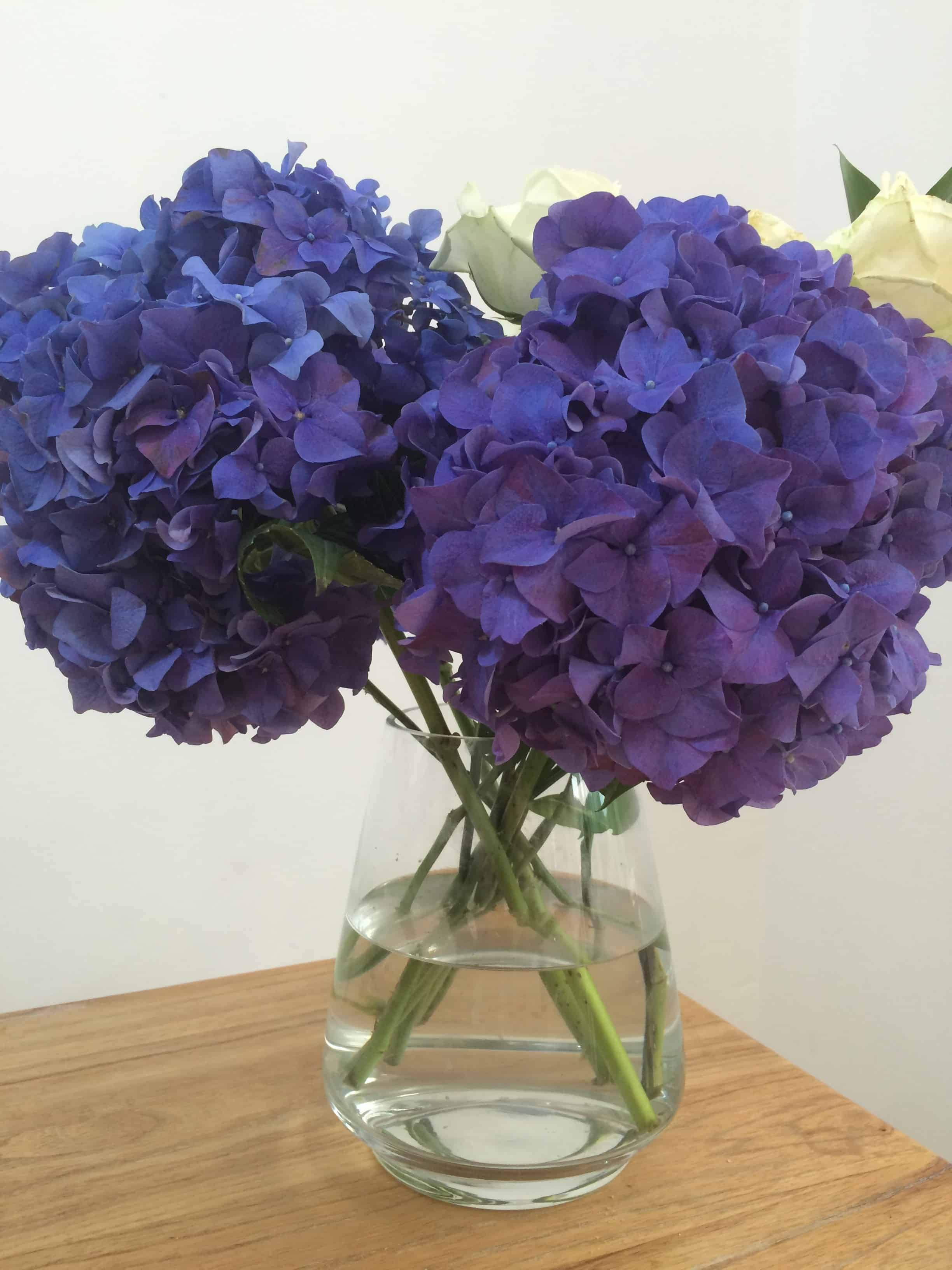 Blossoming Gifts Flowers Review with 33% discount a beautiful space