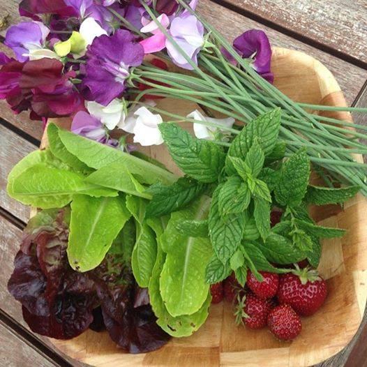 garden gifts
