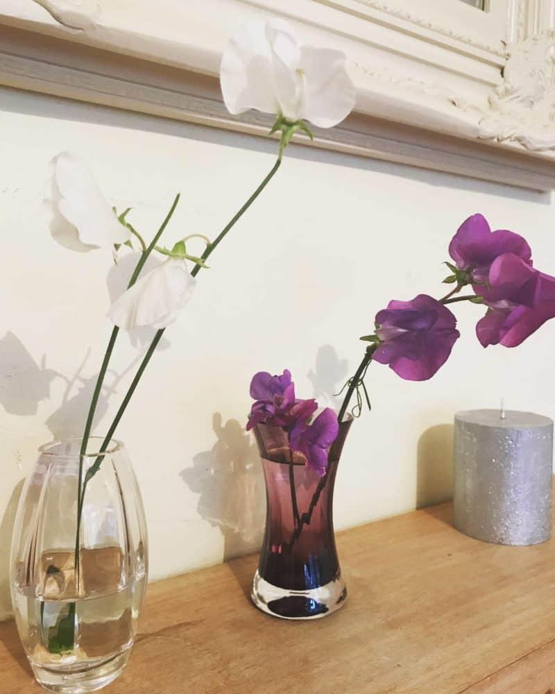 sweetpea vase
