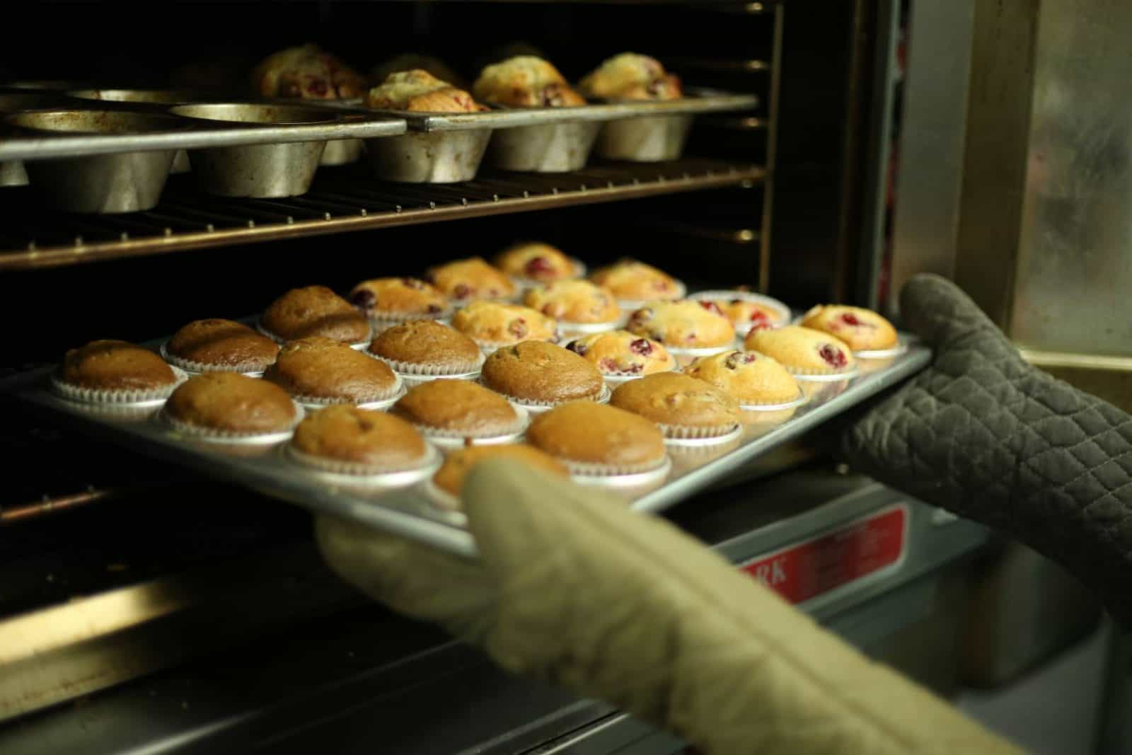 Coping with a Broken Oven, temporary oven, how to cope with a broken oven