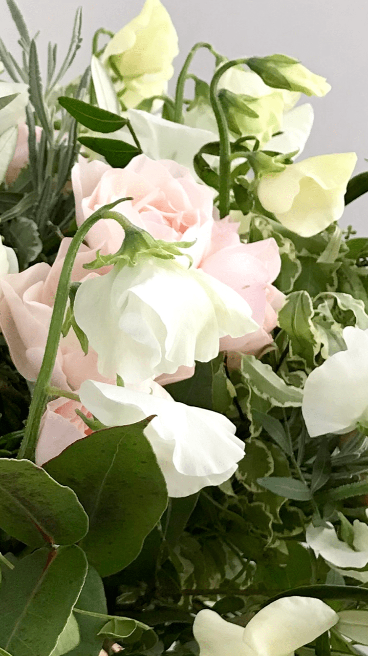 sweet pea flower delivery