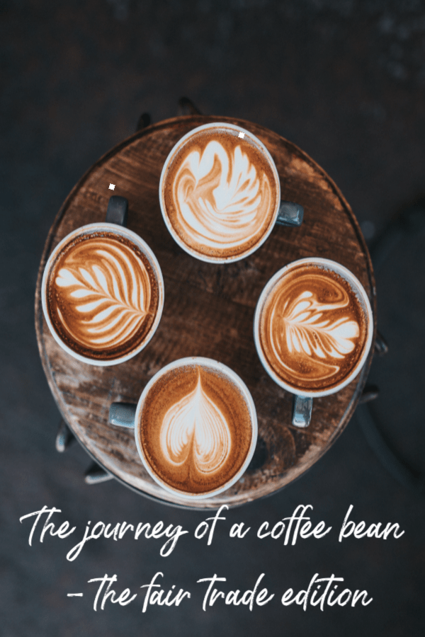 journey of a coffee bean