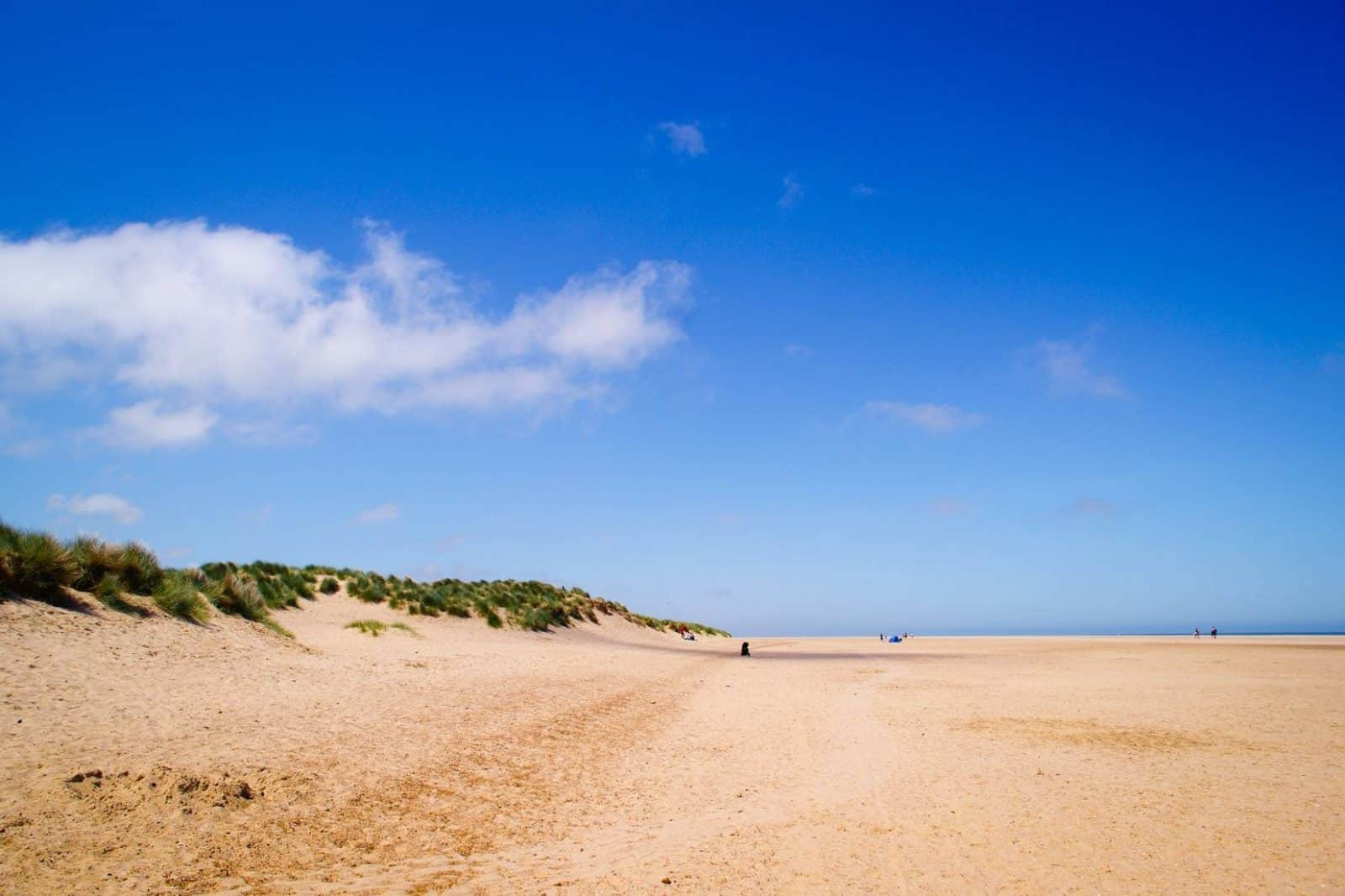 Luxury Cottages in Holkham, Holkham beach