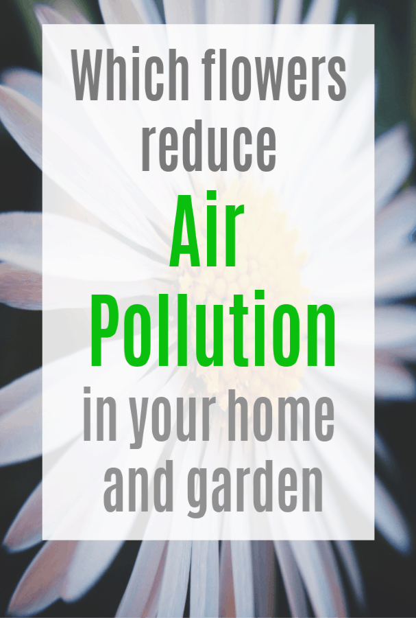 reducing air pollution