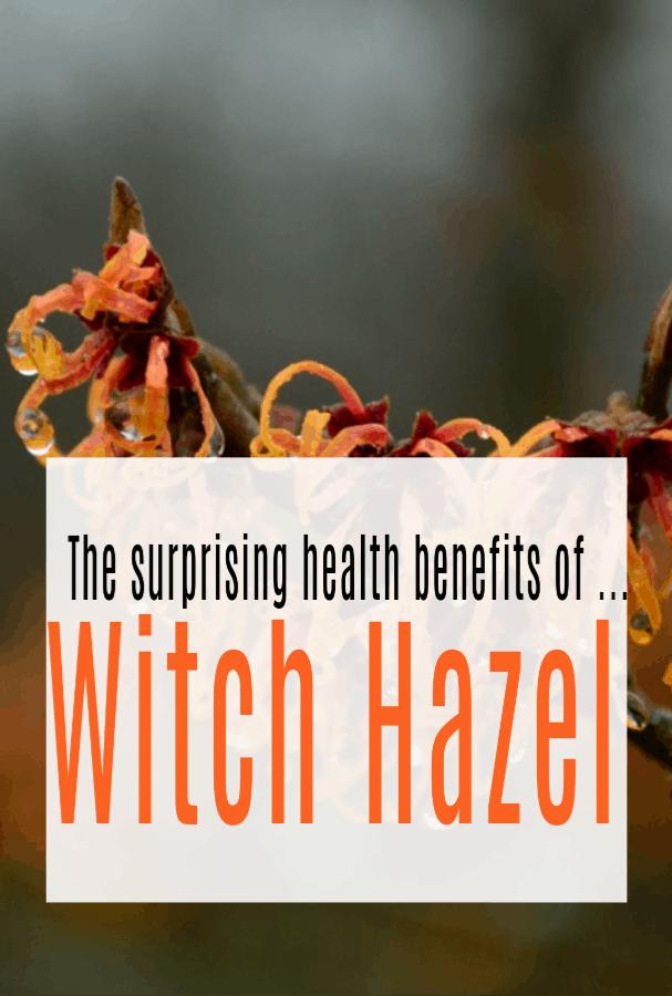 Health Benefits of Witch Hazel