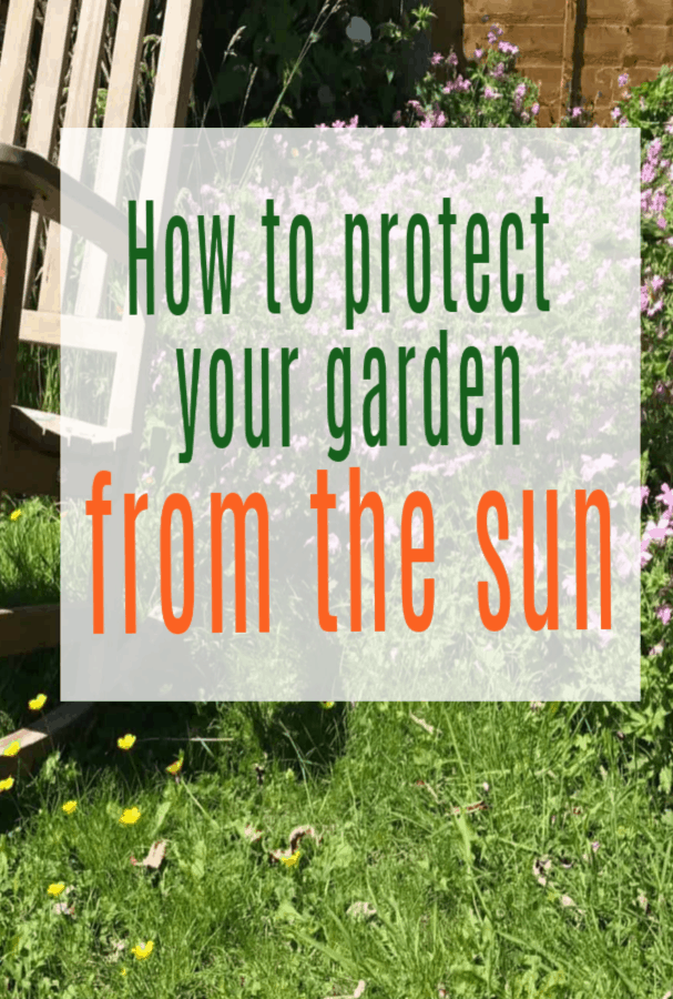 How to protect your garden from the sun