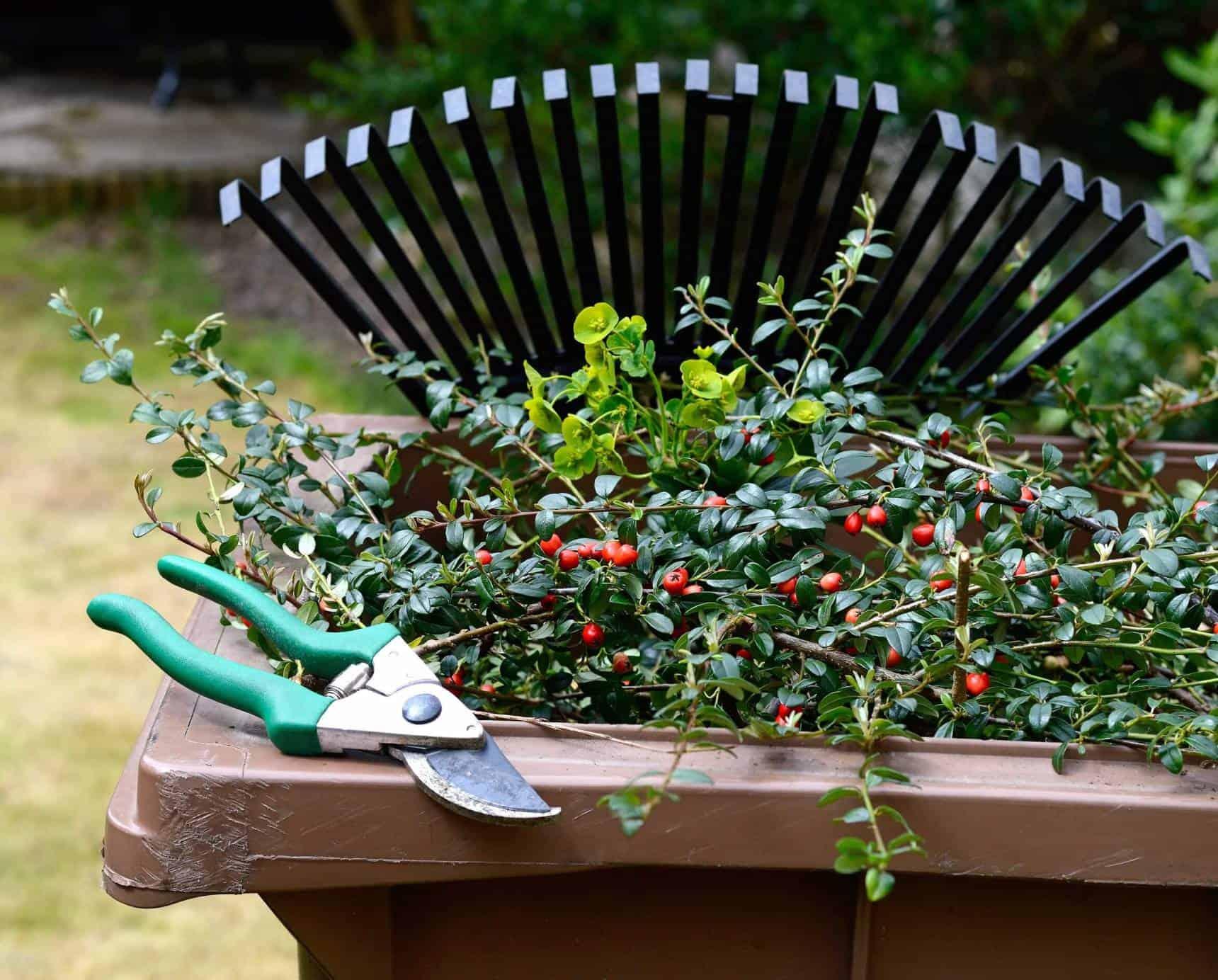 a greener garden