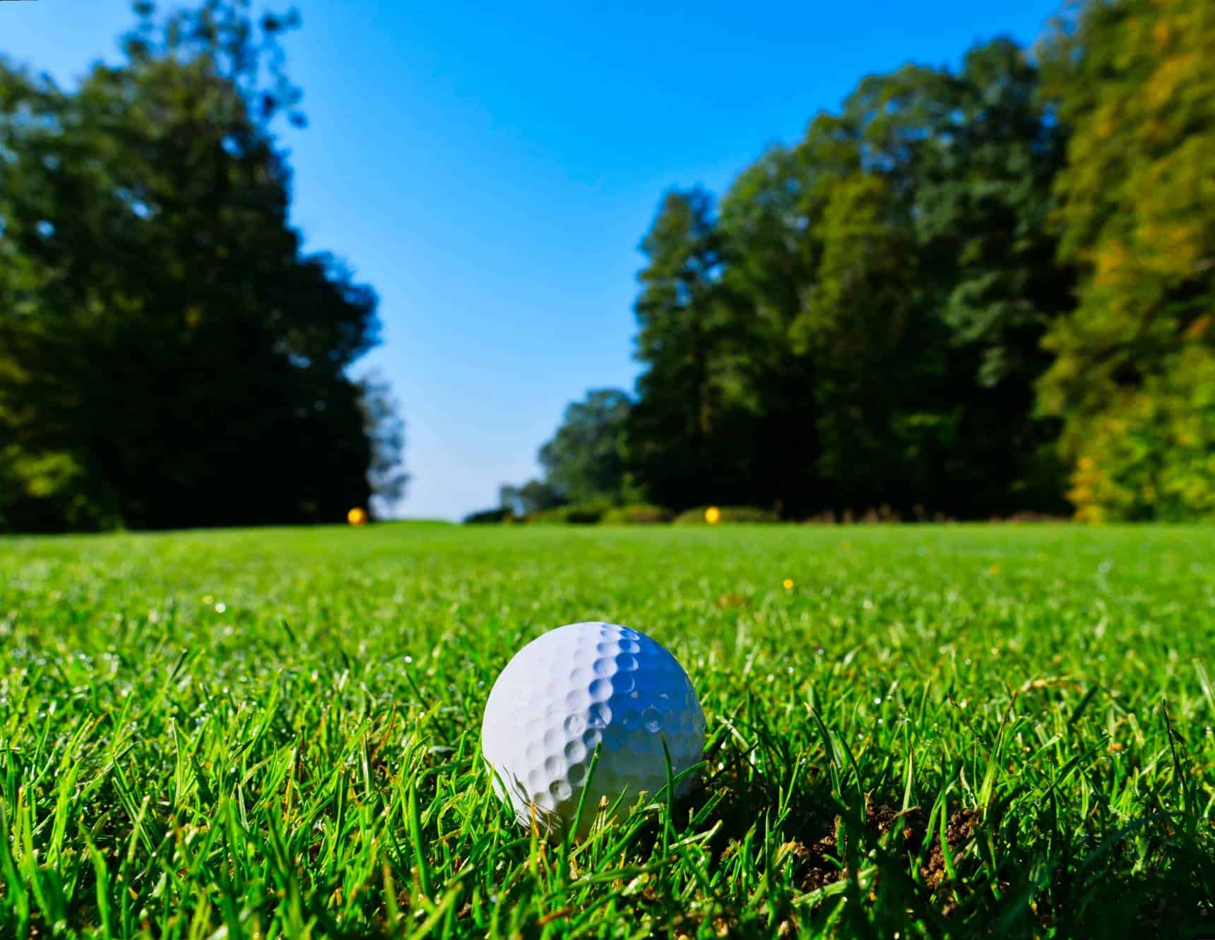 are golf greens real grass?
