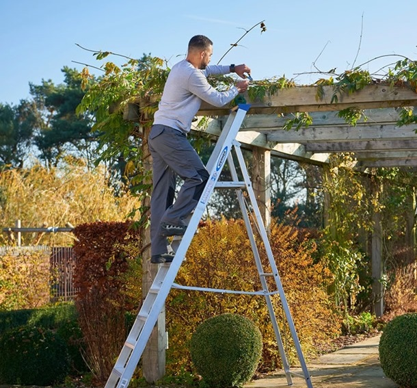 Jobs You Can Do with Different Ladders