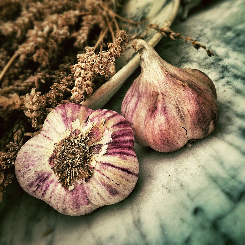 health benefits of garlic?
