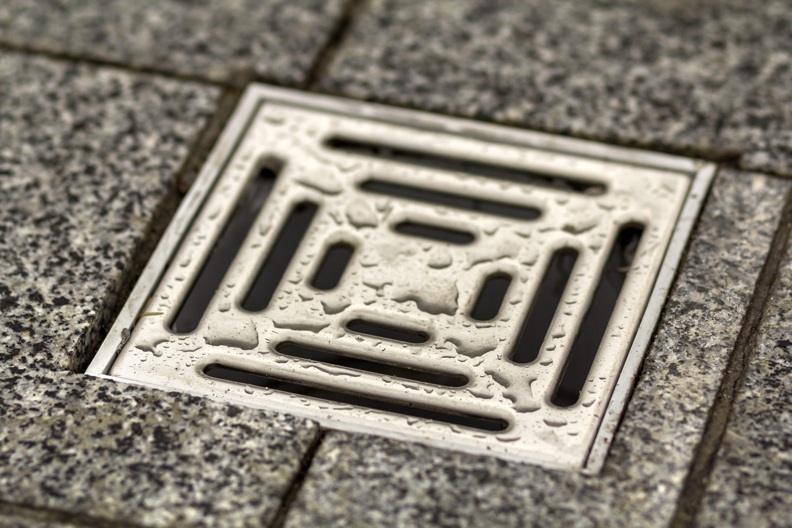 5 Drainage Tips That Will Save You Money In The Long Run