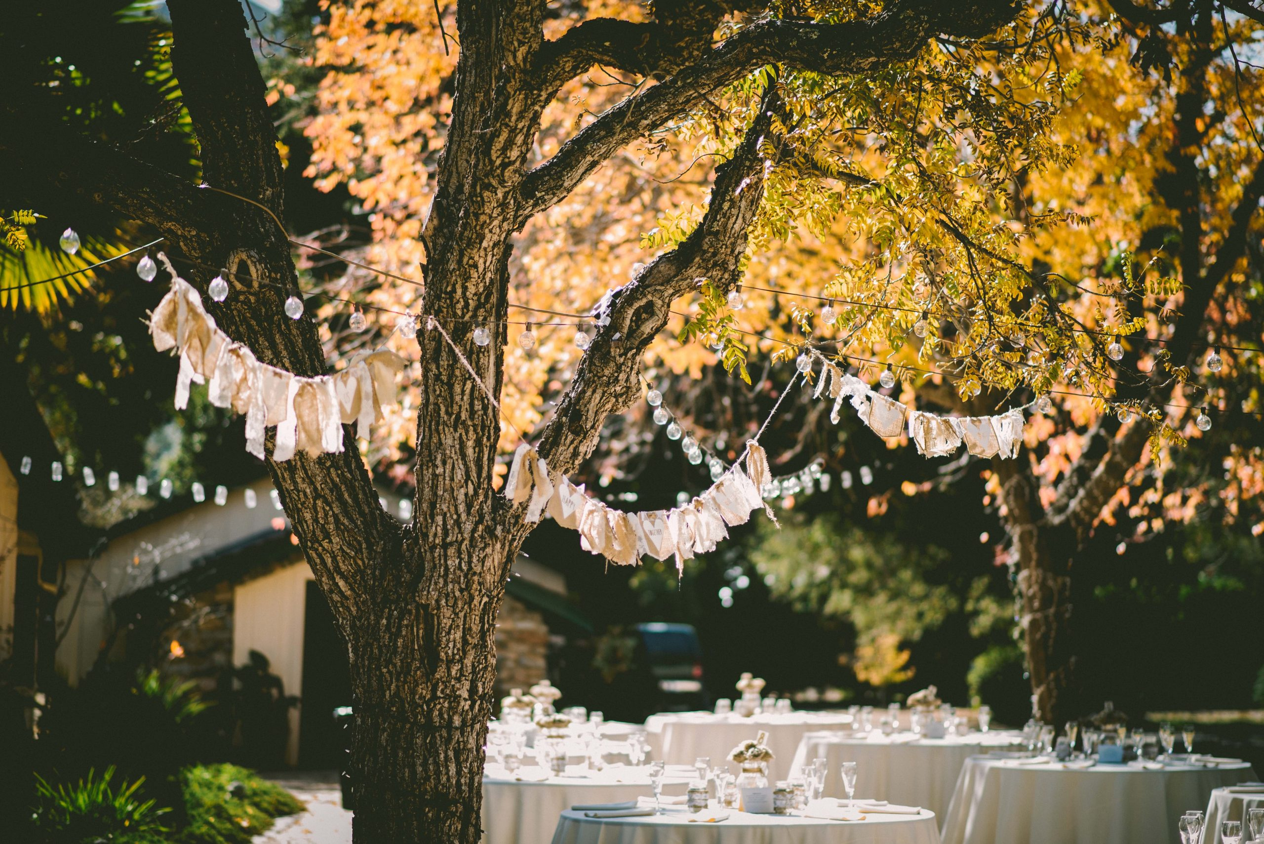How to Throw a Perfect Garden Party