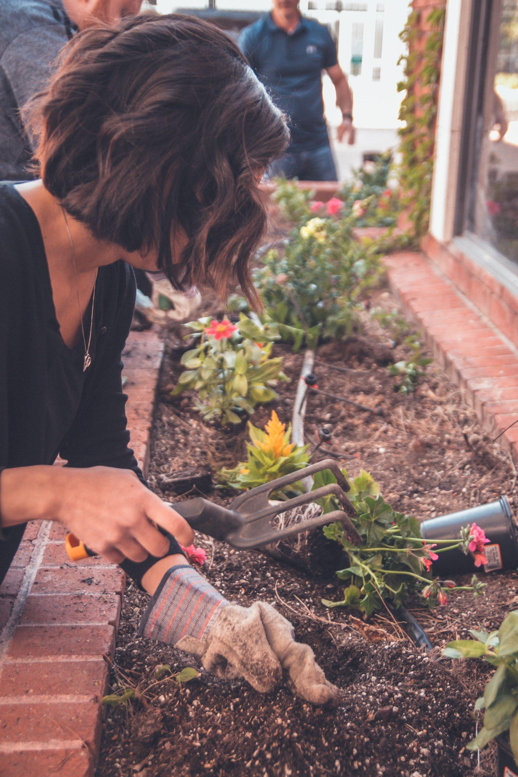 Gardening Tips for Older People